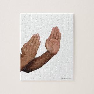 Karate Stance 2 Jigsaw Puzzle