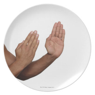 Karate Stance 2 Plate