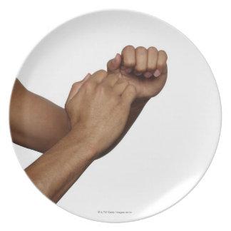 Karate Stance Plate
