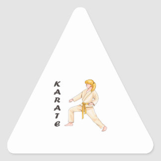 KARATE TRIANGLE STICKER