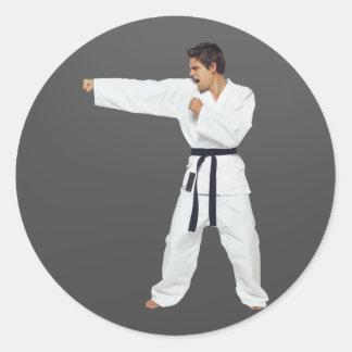 Karate Stickers