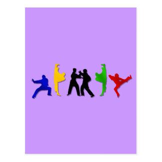 Karate Taekwando MMA Martial Arts Mens Athlete Postcard