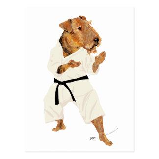 Karate Terrier Post Cards