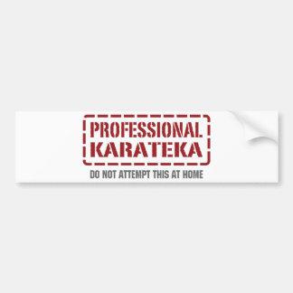 Karateka profesional pegatina de parachoque