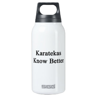 Karatekas Know Better 10 Oz Insulated SIGG Thermos Water Bottle