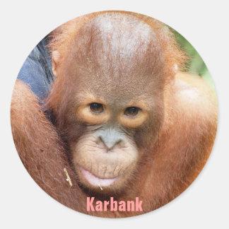 Karbank - huérfano de la fauna etiquetas redondas