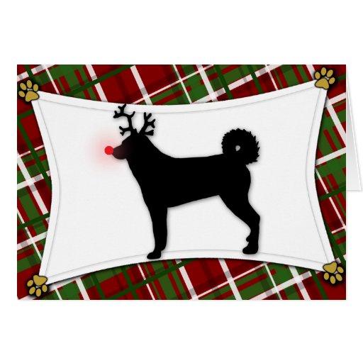 Karelian Bear Dog Reindeer Christmas Card