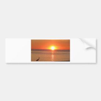 KarenTheBlueHeron 015.JPG Bumper Sticker