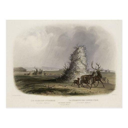 Karl Bodmer-Elkhorn Pyramid on the Upper Missouri Post Card