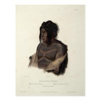 Karl Bodmer-Mahsette-Kuiuab,Chief of Cree Indians Postcard