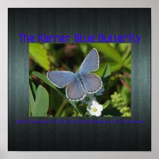 karner blue print