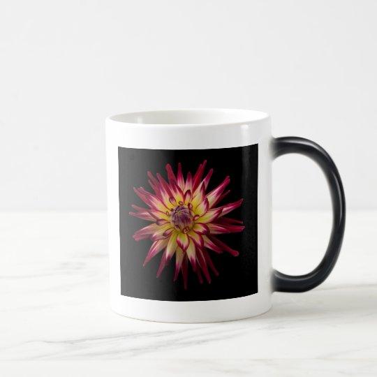 karras on black magic mug