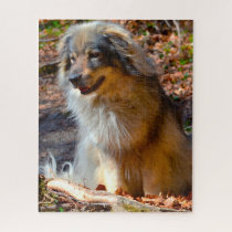 Karst Shepherd Dog. Jigsaw Puzzle