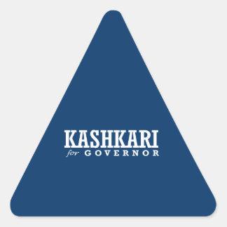 KASHKARI FOR GOVERNOR 2014 STICKERS
