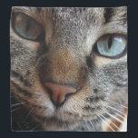 """Kat-a-tude Collection Bandana<br><div class=""""desc"""">Adopt an Attitude of Kat-A-Tude</div>"""