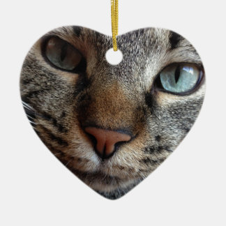 Kat-a-tude Collection Ceramic Ornament