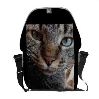 Kat-a-tude Collection Courier Bag