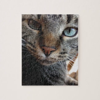 Kat-a-tude Collection Jigsaw Puzzle