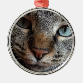 Kat-a-tude Collection Metal Ornament