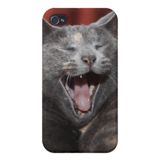 Kat Covers For iPhone 4