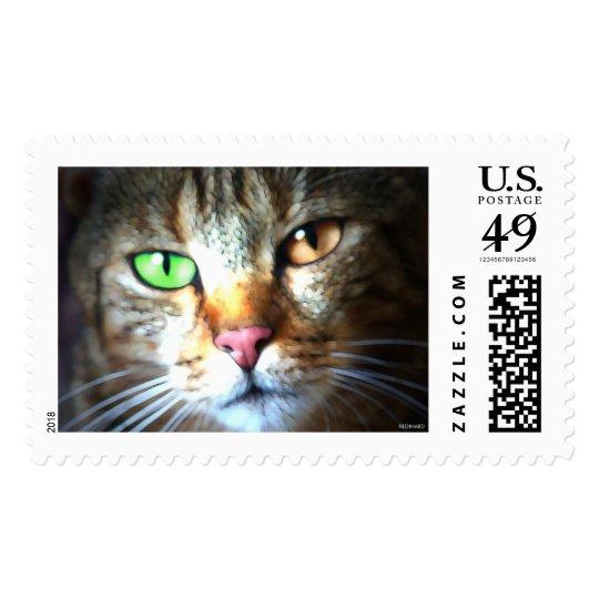 Kat Stamp