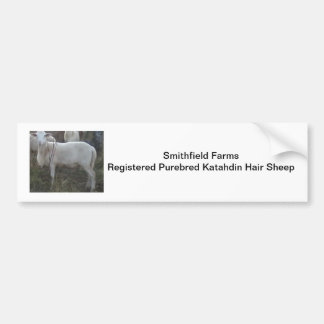 Katahin Hair Sheep Bumper Sticker
