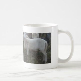 Katahin Hair Sheep Coffee Mug