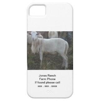 Katahin Hair Sheep iPhone SE/5/5s Case