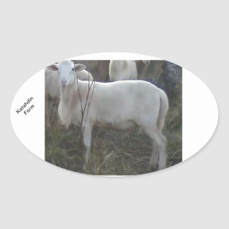 Katahin Hair Sheep Oval Sticker