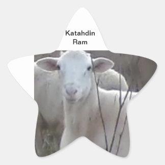 Katahin Hair Sheep Star Stickers