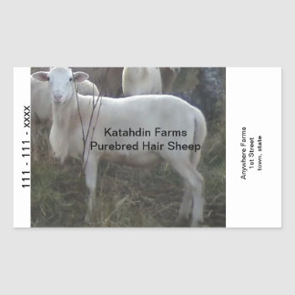 Katahin Hair Sheep Rectangular Sticker