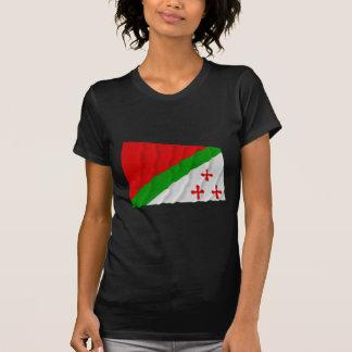 Katanga Waving Flag (1960-1963) T Shirt