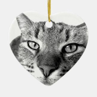 Kater Katze relaxt - Cat resting - laid-back Ornament