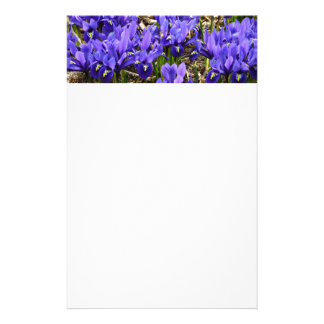 Katherine Hodgkin irisa la primavera púrpura azul Papelería Personalizada