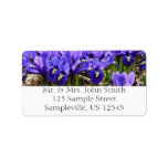 Katherine Hodgkin Irises Blue Purple Spring Floral Label
