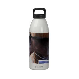Kathy Ritvo Stables Water Bottles