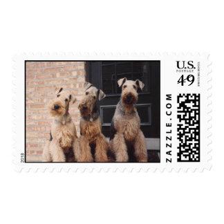 kati-bravo-yankee postage stamp