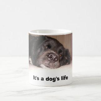 kATIE & cO. 053, It's a dog's life Magic Mug