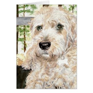 Katie el Wheaton Terrier Tarjeton