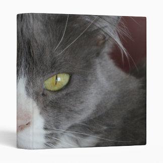 """KATIE GRIS Y BLANCO DEL CAT CARPETA 1"""""""