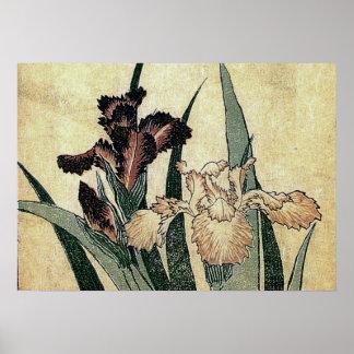 Katsushika Hokusai's Irises (Detail) Poster