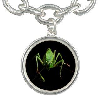 Katydid Charm Bracelet