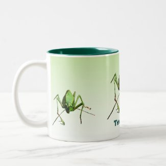 Katydid Earth Day