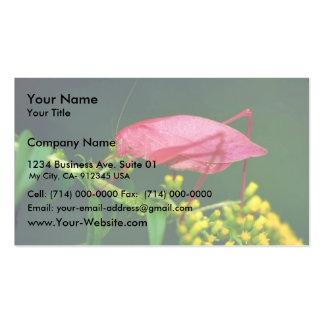 Katydid en vara de oro temprana tarjetas de visita
