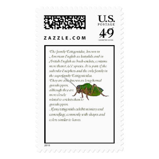 Katydid Facts Stamps