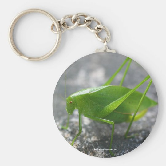 Katydid Grasshopper Nature Photo Keychain Keyring
