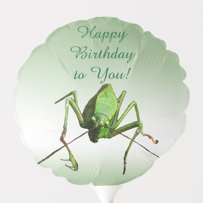 Katydid Green Birthday Animal Balloon
