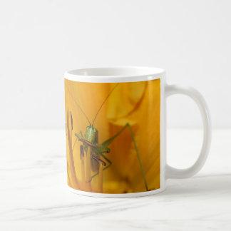 Katydid Lunch - Mug