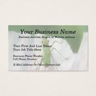 Katydid Nymph - Scudderia Furcata Business Card