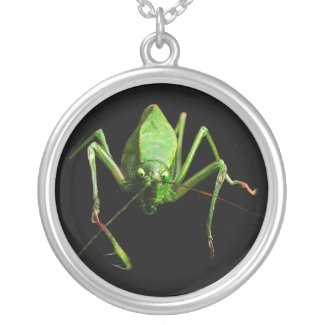 Katydid Silver Plated Necklace